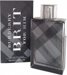 burberry-brit-for-men-100-ml-parfum-store